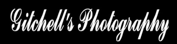 Gitchell's Photography, Harrisonburg, VA Photographer